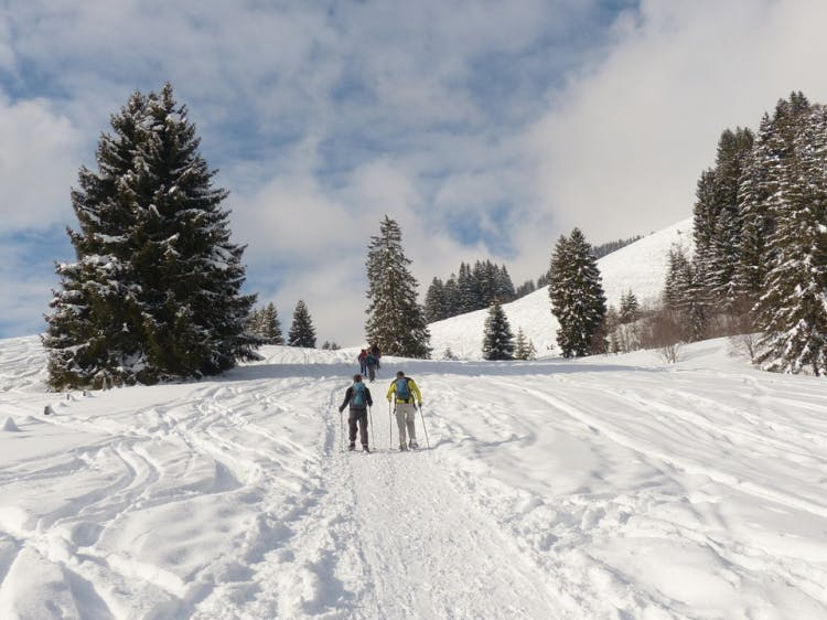Groepsreis Actieve Winterreis Zweden