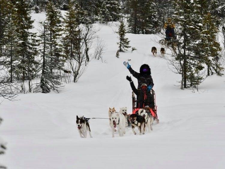 Singlereis Winters Avontuur Zweeds Lapland