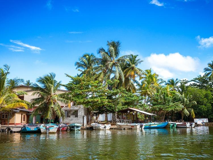 Singlereis Sri Lanka Strand & Cultuur