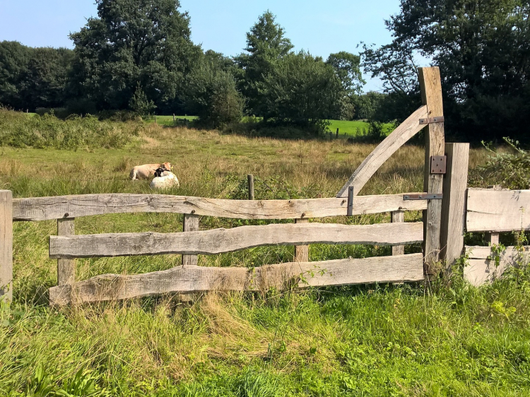 Singlereis Weekendje weg In Oost-Nederland