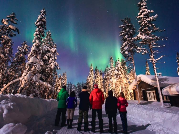 Singlereis Avontuurlijk in Fins Lapland