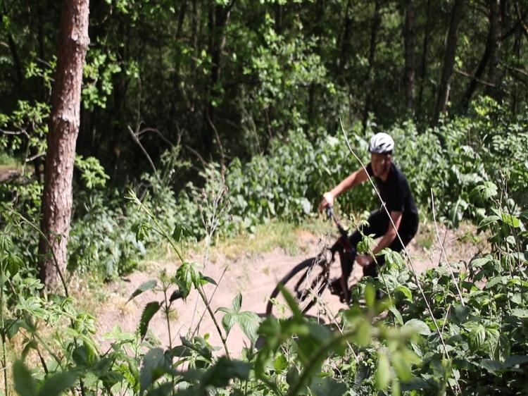Groepsreis Actieve reis Feestdagen in Limburg