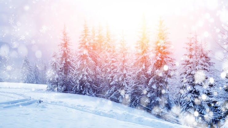 Met Kerst met singles genieten in Noorwegen
