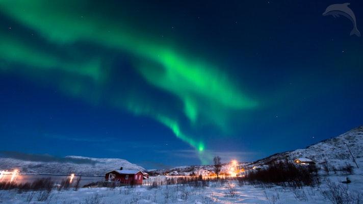 Singlereis Finland 8 dagen