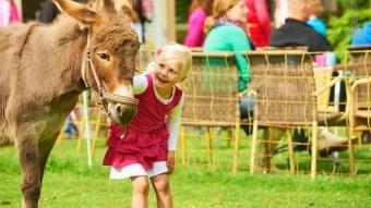 Alleenstaande ouders kamperen luxe bij de boer