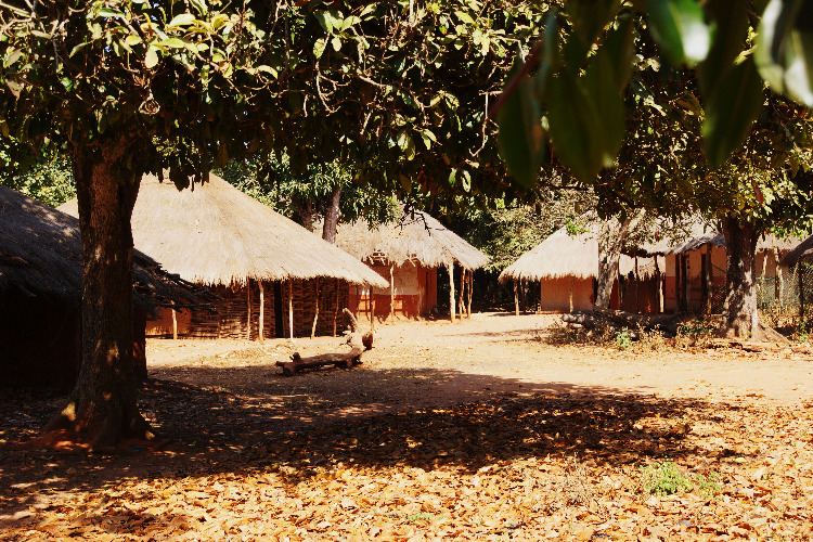 Gambia....ga ook mee op 25 februari!