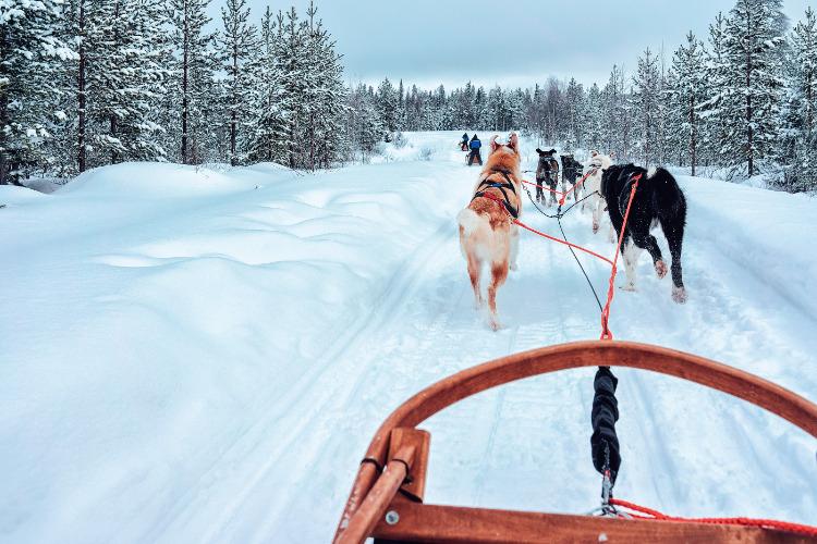 Zweden, een typische bucketlist vakantie