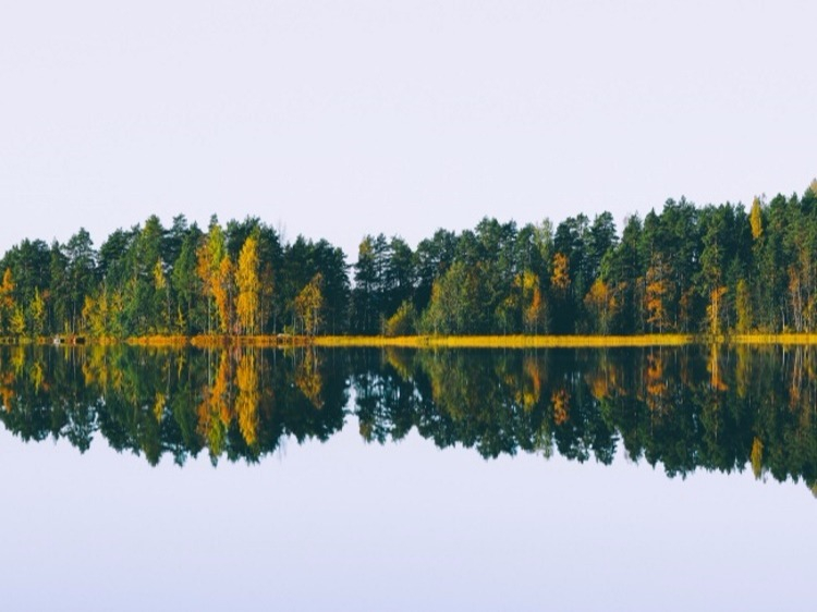 Groepsreis Rondreis door Finland