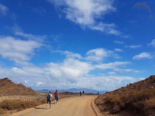 Singlereis HBO+ genieten op Fuerteventura