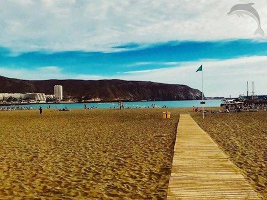 Singlereis Strand en Feest Tenerife