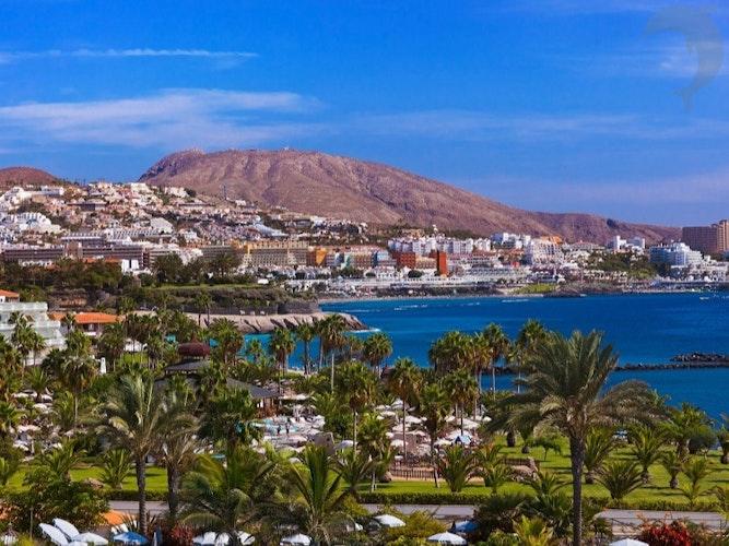 Singlereis Strand en Feest op Tenerife
