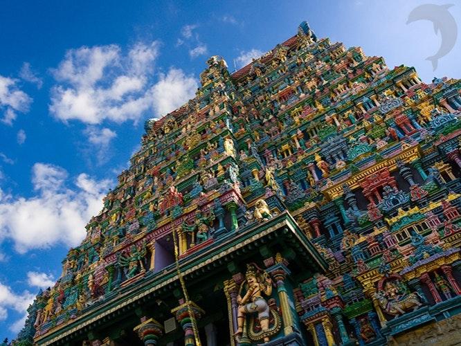 Singlereis Zuid-India 23-daagse rondreis