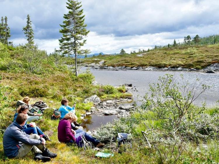 Singlereis Zomers Avontuur in Zweeds Lapland