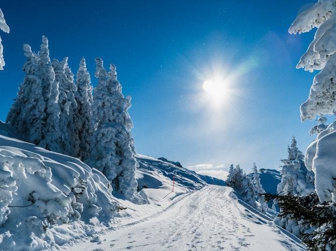Singlereis Wintersport In Wagrain