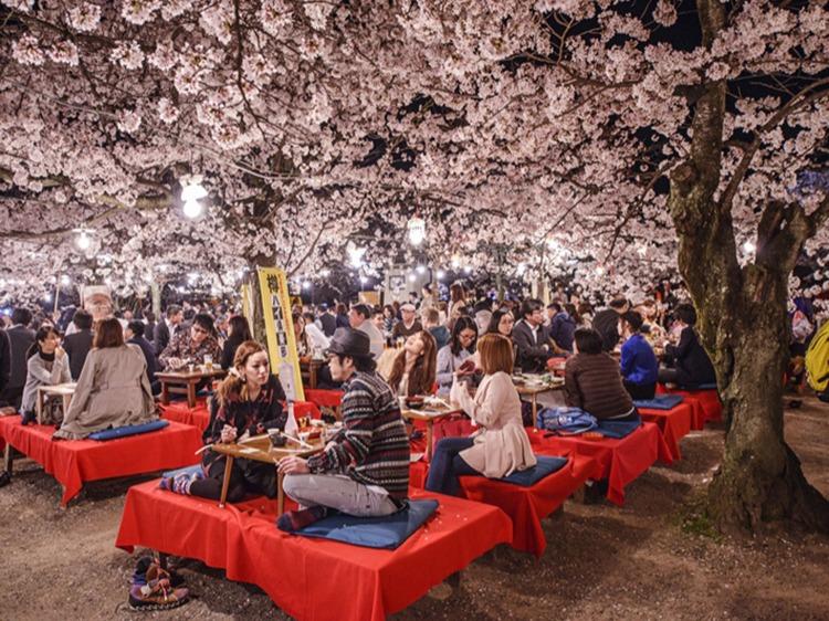 Singlereis Japan 10-daagse rondreis