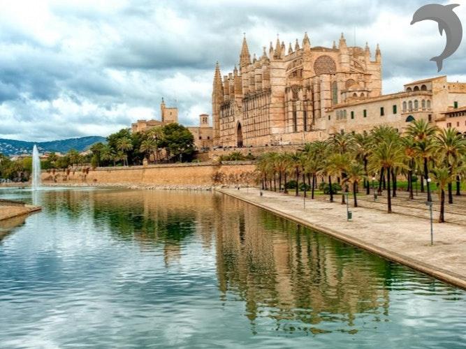 Singlereis Strand en Feest op Mallorca