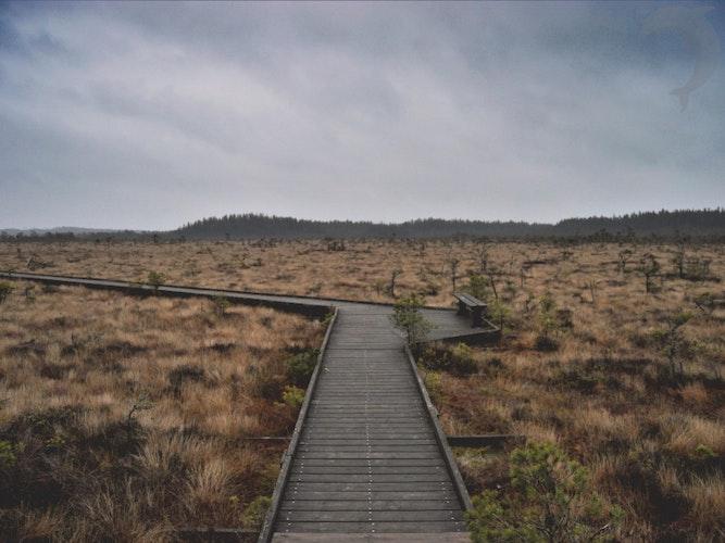 Groepsreis Wandelvakantie in Zweden