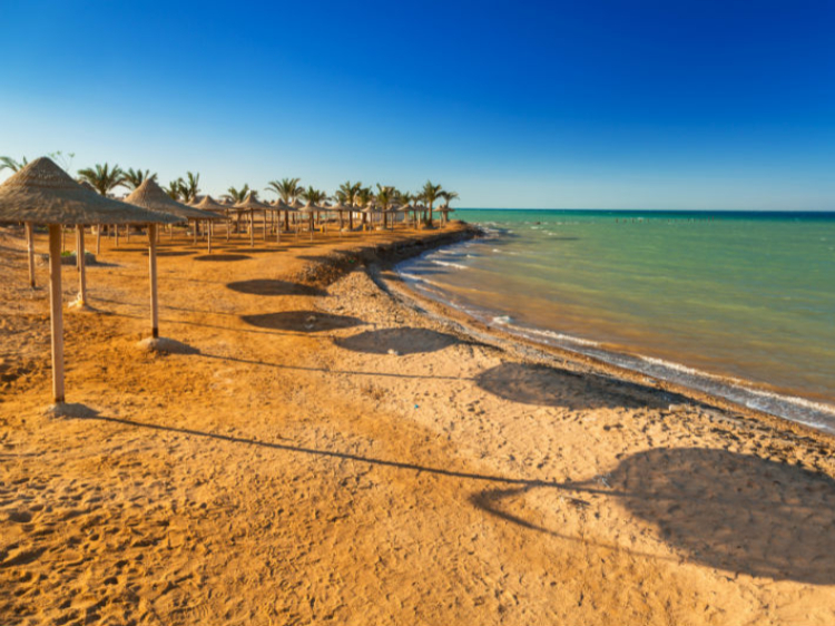 Singlereis Egypte 14-daagse rondreis