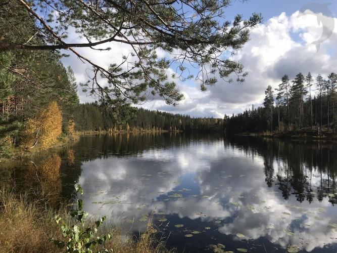 Groepsreis Actieve vakantie Herfst in Zweden