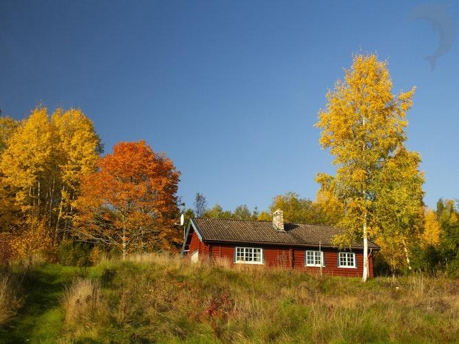 Singlereis Actieve vakantie Herfst in Zweden