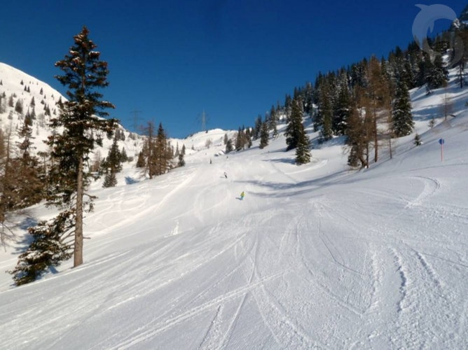 Eenoudervakantie Sneeuwplezier in Biberwier