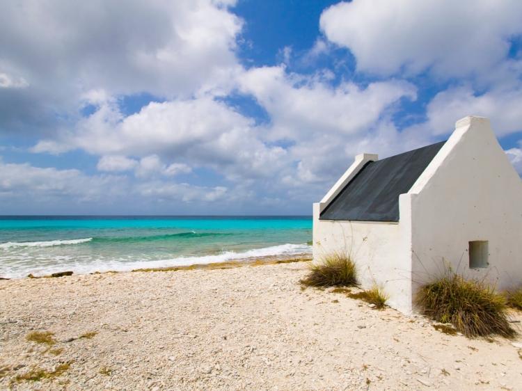 Singlereis HBO+ Paradijselijk genieten op Bonaire