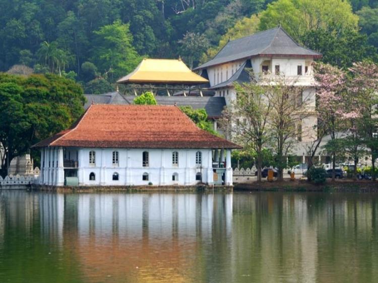 Singlereis Sri Lanka 15-daagse rondreis