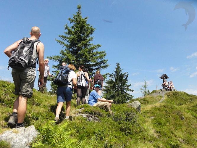 Singlereis Wandelen in Niederau